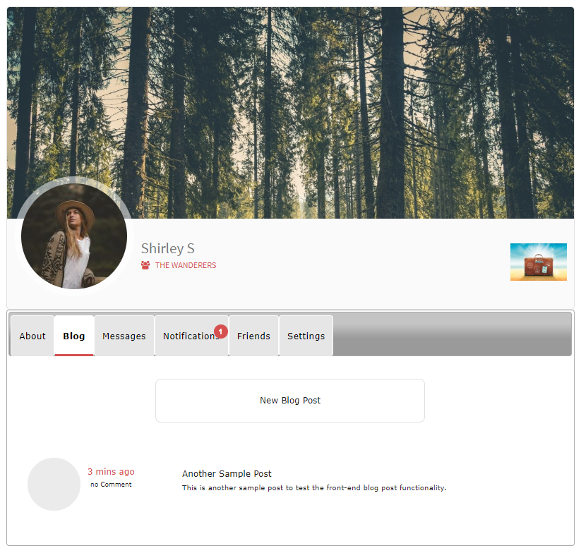 New Post Visible on Profile Front-end