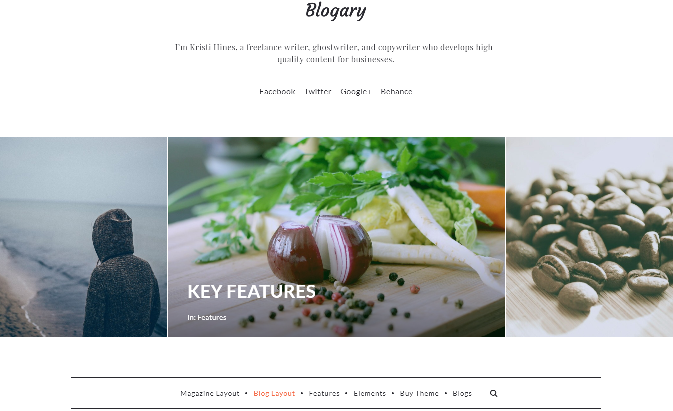 Best WordPress themes for Membership Sites blogery