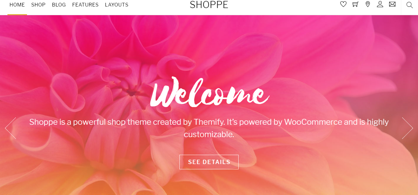 Best WordPress themes for Membership Sites shoppe