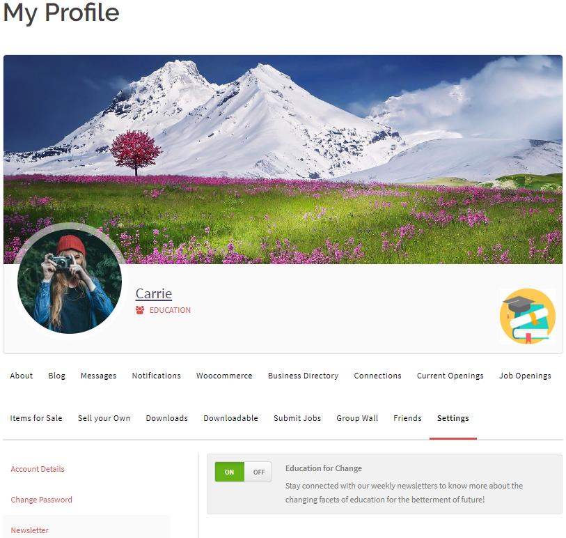 WordPress Profile frontend