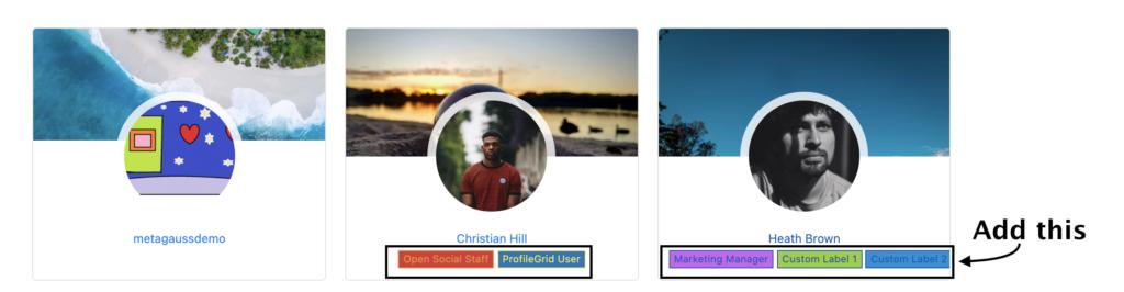 Custom Labels in Profile