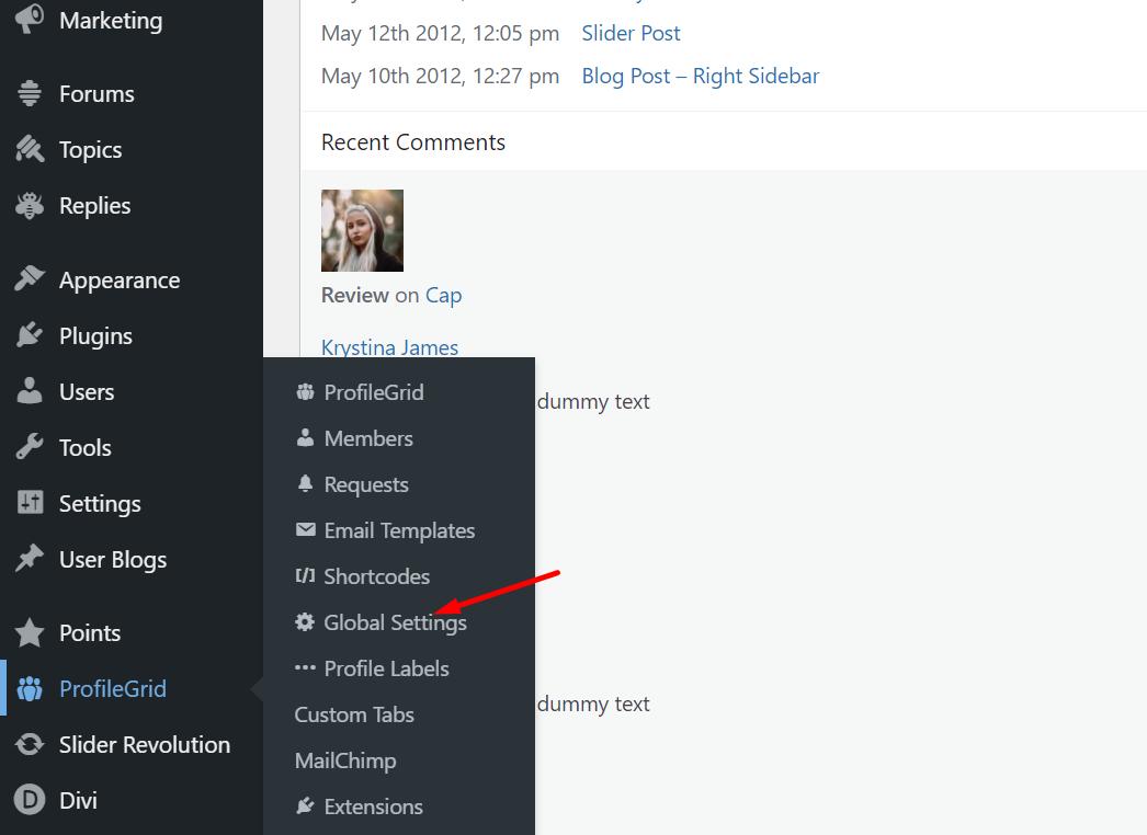 WordPress logout menu items