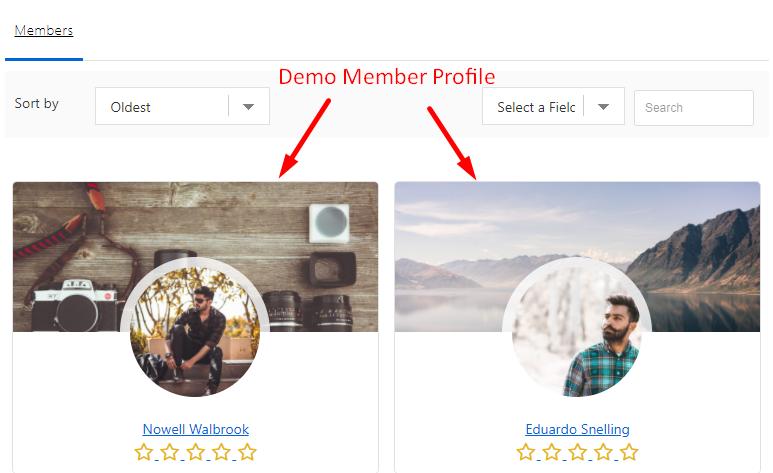 Demo Member profiles