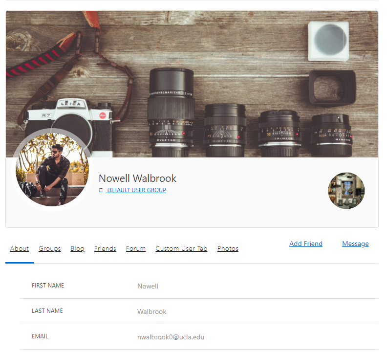 Mock-up of demo profile