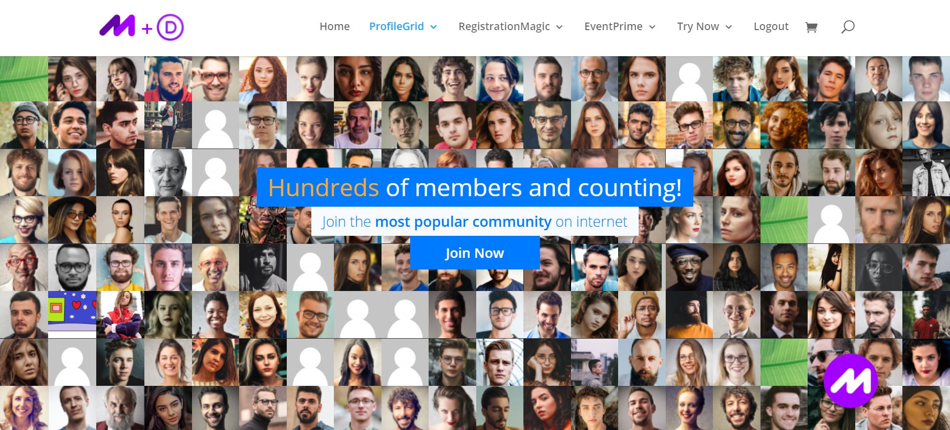 WordPress Hero Image Banner Example