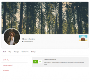 MailChimp Profile Opt-in