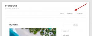 pg-profile-menu-screenshot-3