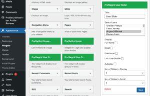 user-slider-widget-settings